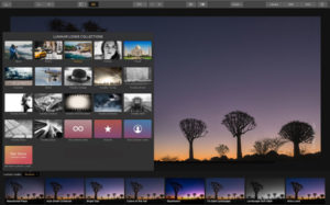 Unlock the full potential of your photos – edit, organize, and view in one place.